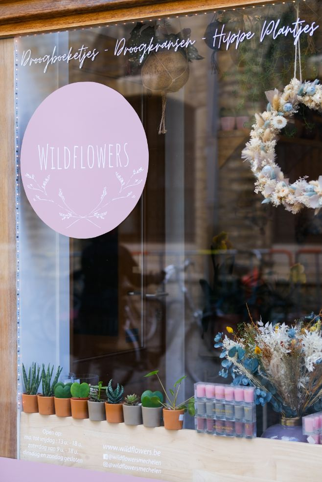 Wildflowers-49